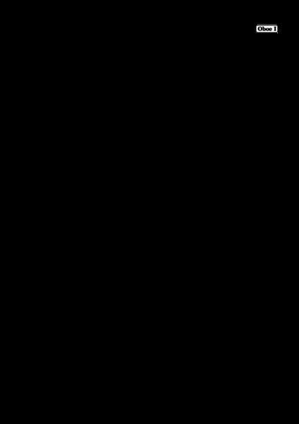 webshop/EK-1041/EK-1041_Eybler_SperateInDeo_HV41_Instrument_ObI-01.png